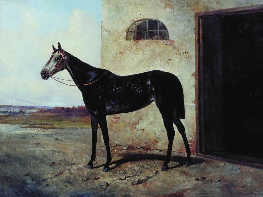Серая лошадь. 1872.jpg
