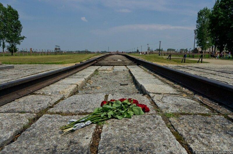 Фотоэкскурсия. Концлагерь Освенцим / Аушвиц 0 105d27 191dd0d6 XL