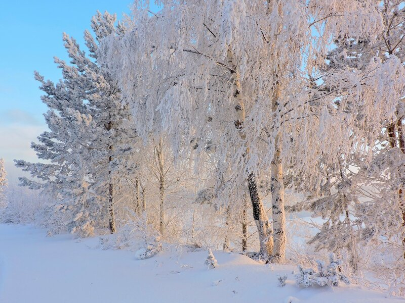 Нежность зимнего кружева...