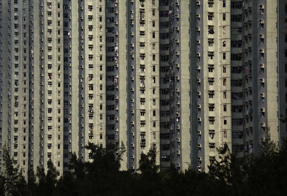 14. Звонок. Нет, вид с первого этажа жилого дома. (Фото Anthony Wallace):