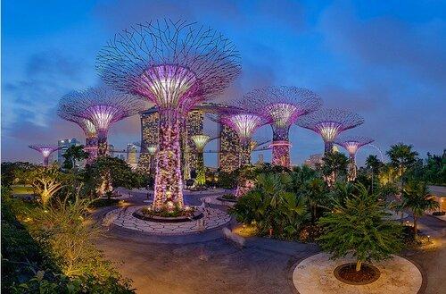 Достопримечательности Сингапура - чудо-сады