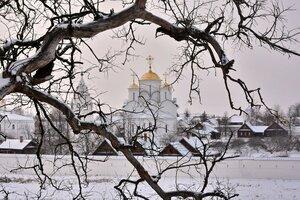 Рисунки зимнего дерева