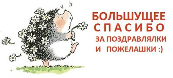 https://img-fotki.yandex.ru/get/70872/62293168.1f/0_1b08ea_a9db5495_orig.jpg