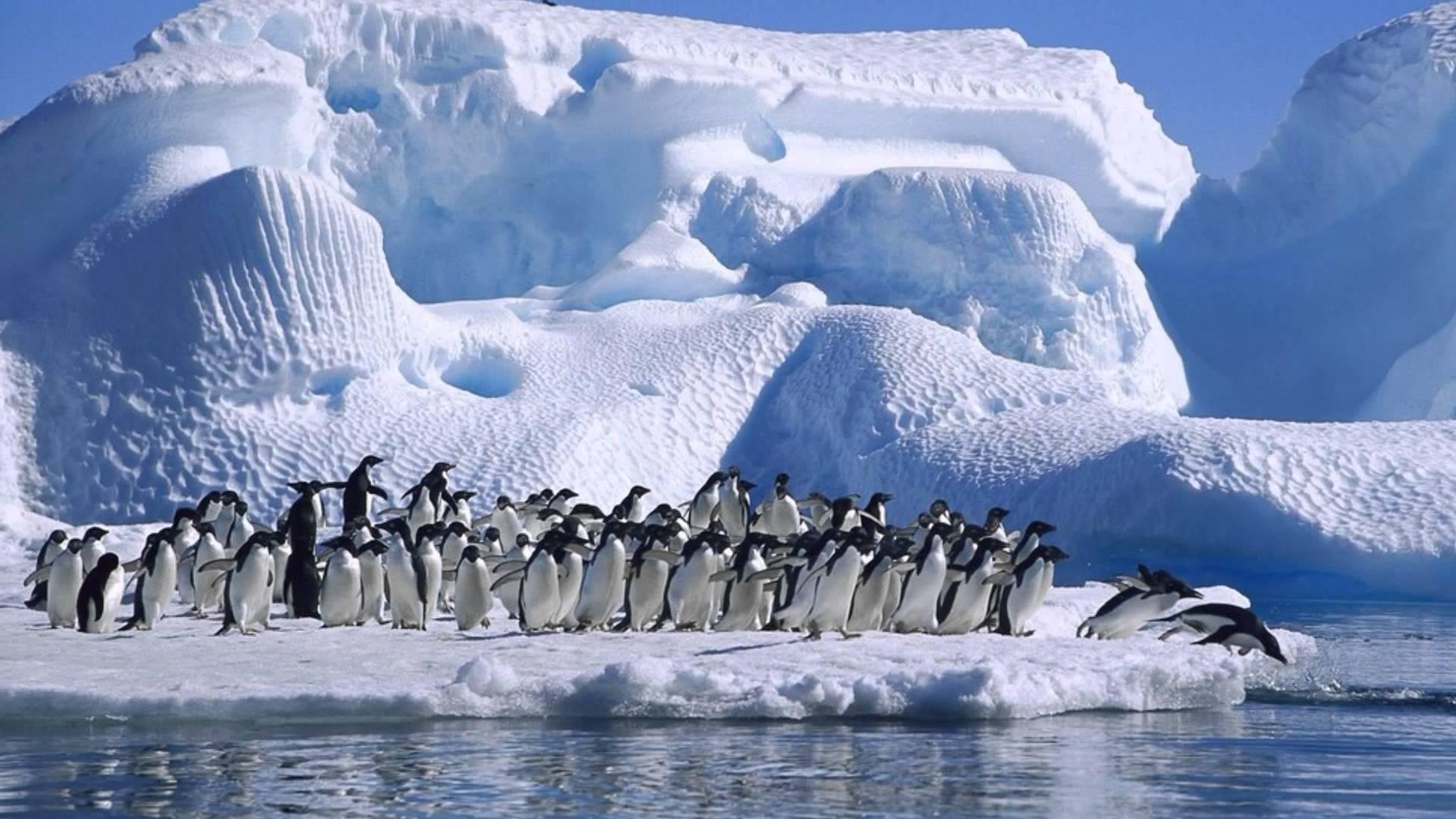 Загадочное место - Антарктида