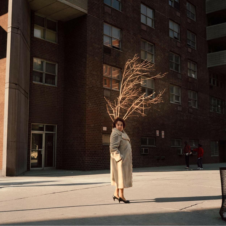 1987. Женщина у дерева