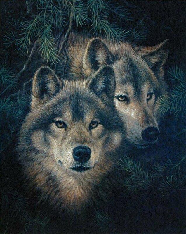Художник Larry Fanning. Естественная среда животного мира