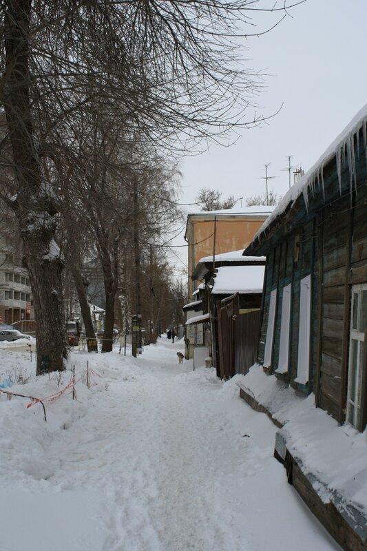 Прогулка после снегопада 025.JPG