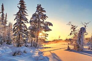 вечерние тени января