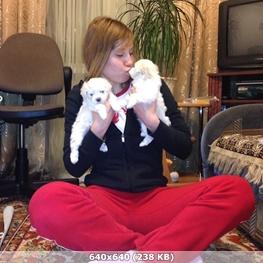 http://img-fotki.yandex.ru/get/71249/348887906.b2/0_1595cb_7b415d56_orig.jpg
