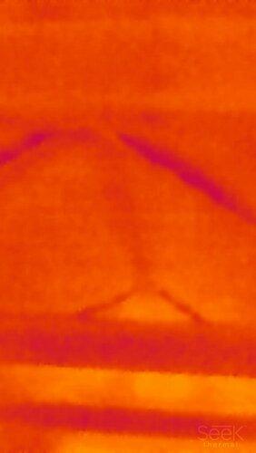img_thermal_1454762250877.jpg
