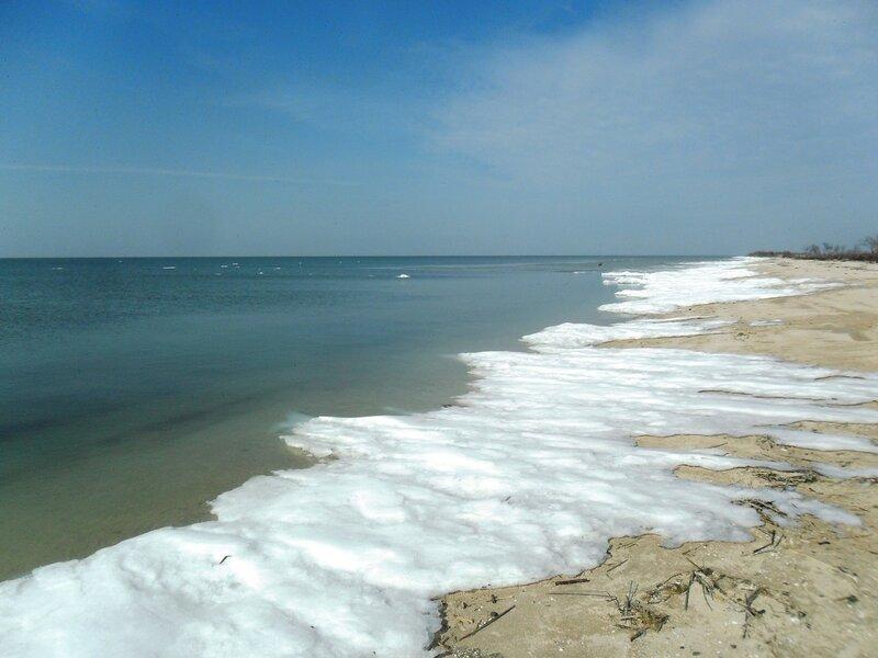 Белая окантовка линии берега ... SAM_5671.JPG
