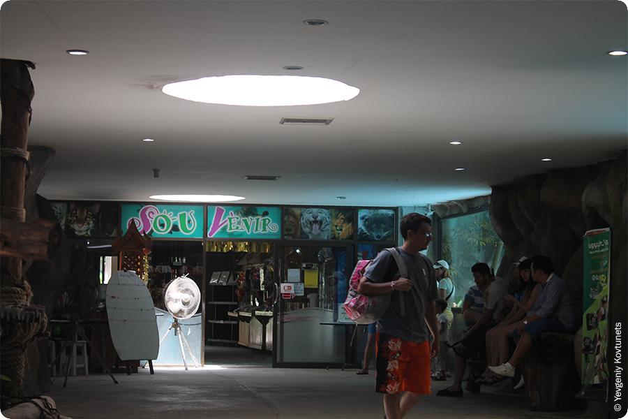 Автор блога в ожидании сюрприза,  зоопарк Кхао-Кхео
