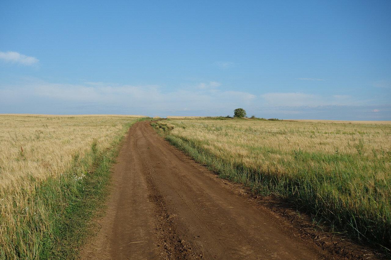 последние метры Татарстана