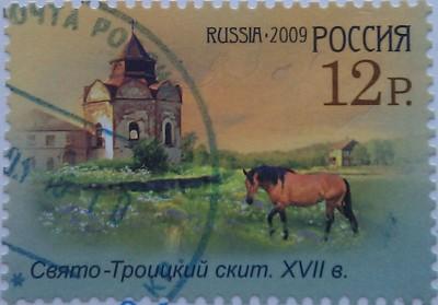 2009 соловки скит и лошадь 12