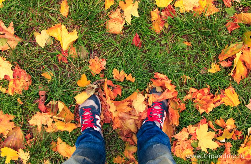Осенний Будапешт 11.jpg