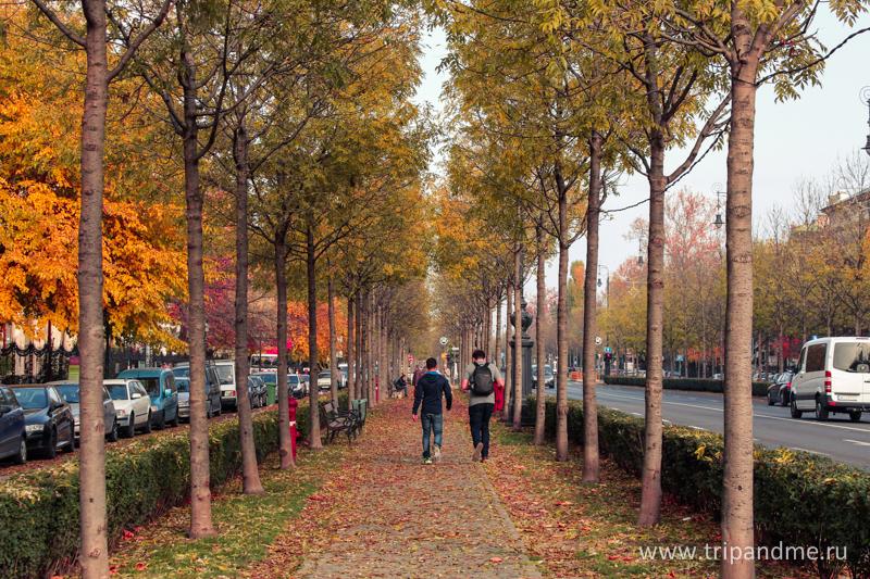 Осенний Будапешт 14.jpg