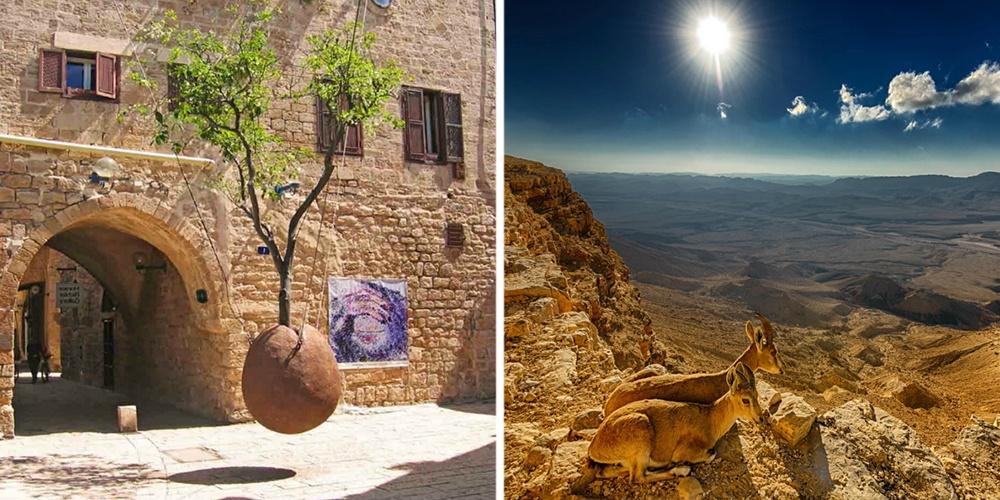 Здесь ощущается дыхание библейской истории, нопомимо этого Израиль— уникальное природное место. По