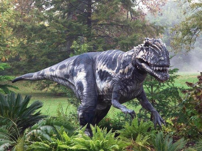 Тираннозавры охотились стаями