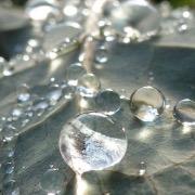 Капельки воды