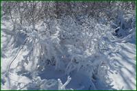 http://img-fotki.yandex.ru/get/72233/15842935.267/0_dfbc7_6513897e_orig.png