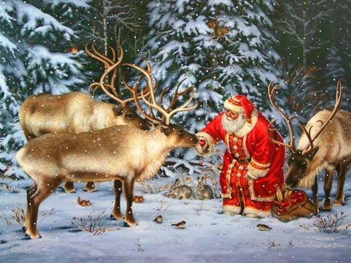 Картинки с новым годом с оленем, картинки отдых