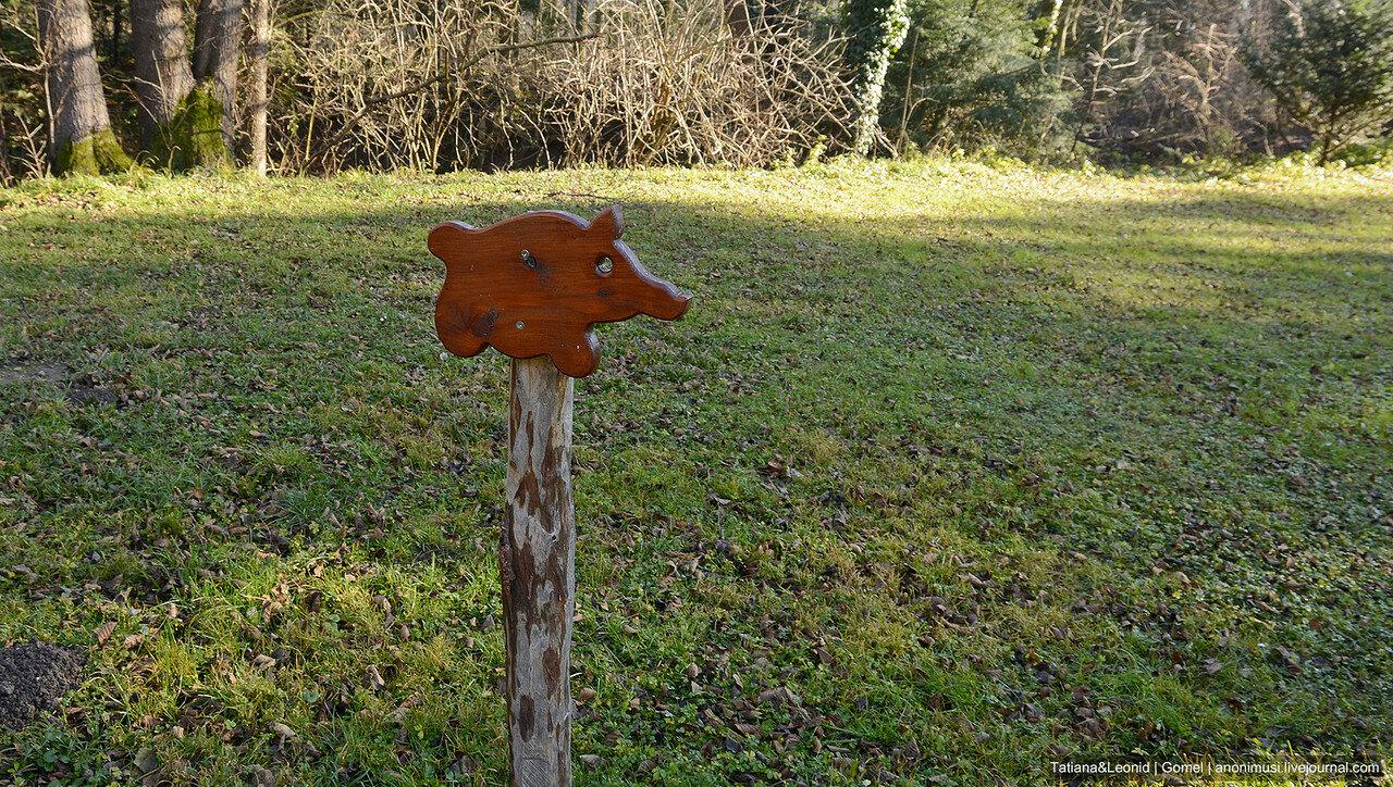 Венский лес в декабре. Австрия