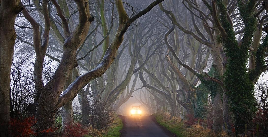 Дорога Королевской Гавани Темная Аллея, Северная Ирландия