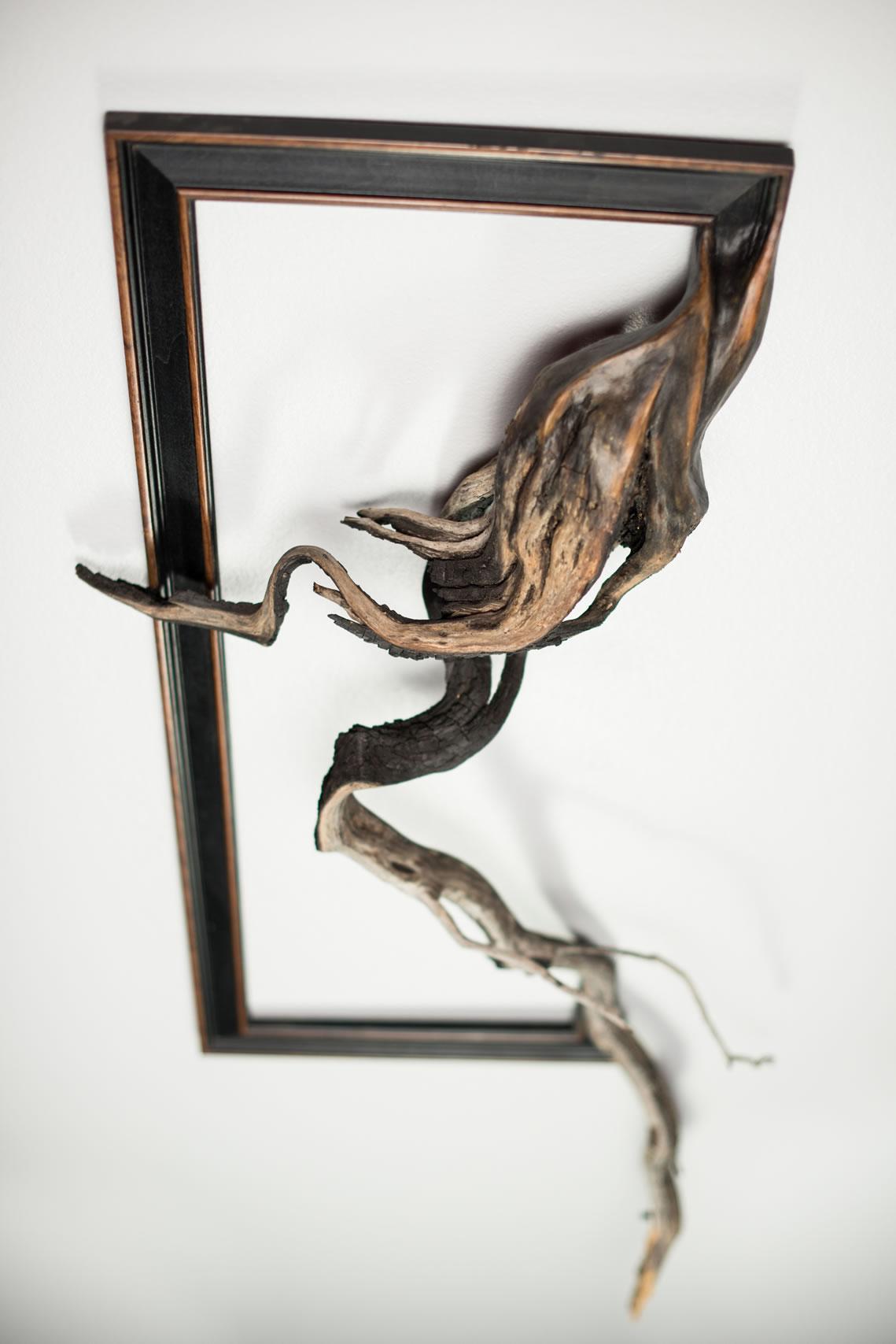 Fusion Frames by Darryl Cox