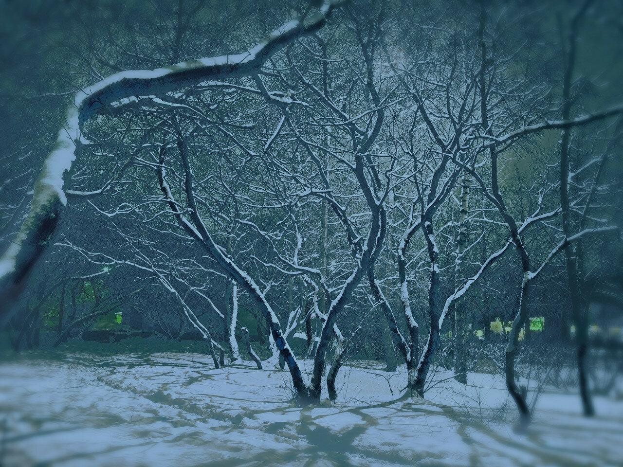 Синяя ночь. Автор фото: Юрий Семенов