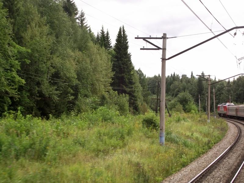 Записки северного медведя 19efbd51c7c