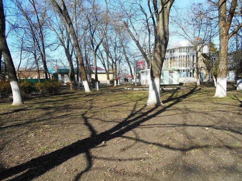 В зимнем парке ... DSCN3888.JPG