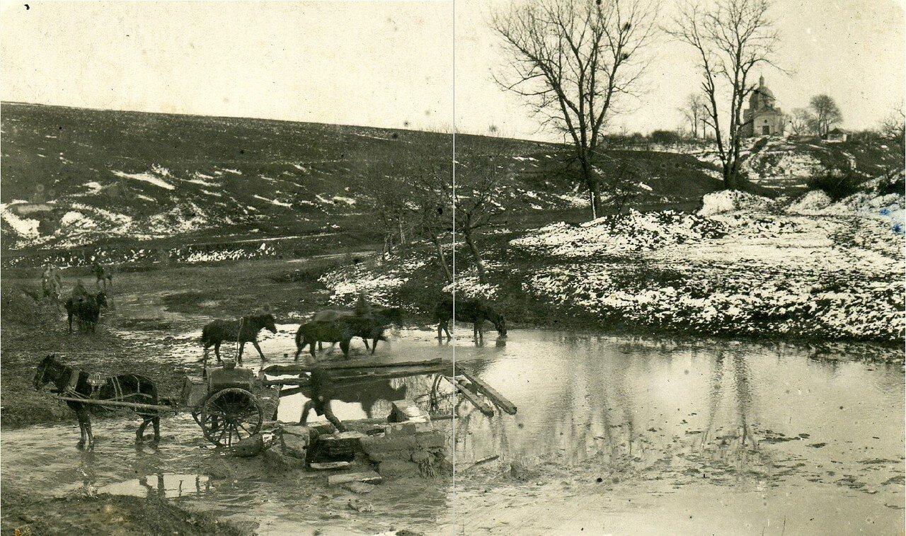 73. 1915–1916. Водопой.  Река Сервечь, Минская губерния