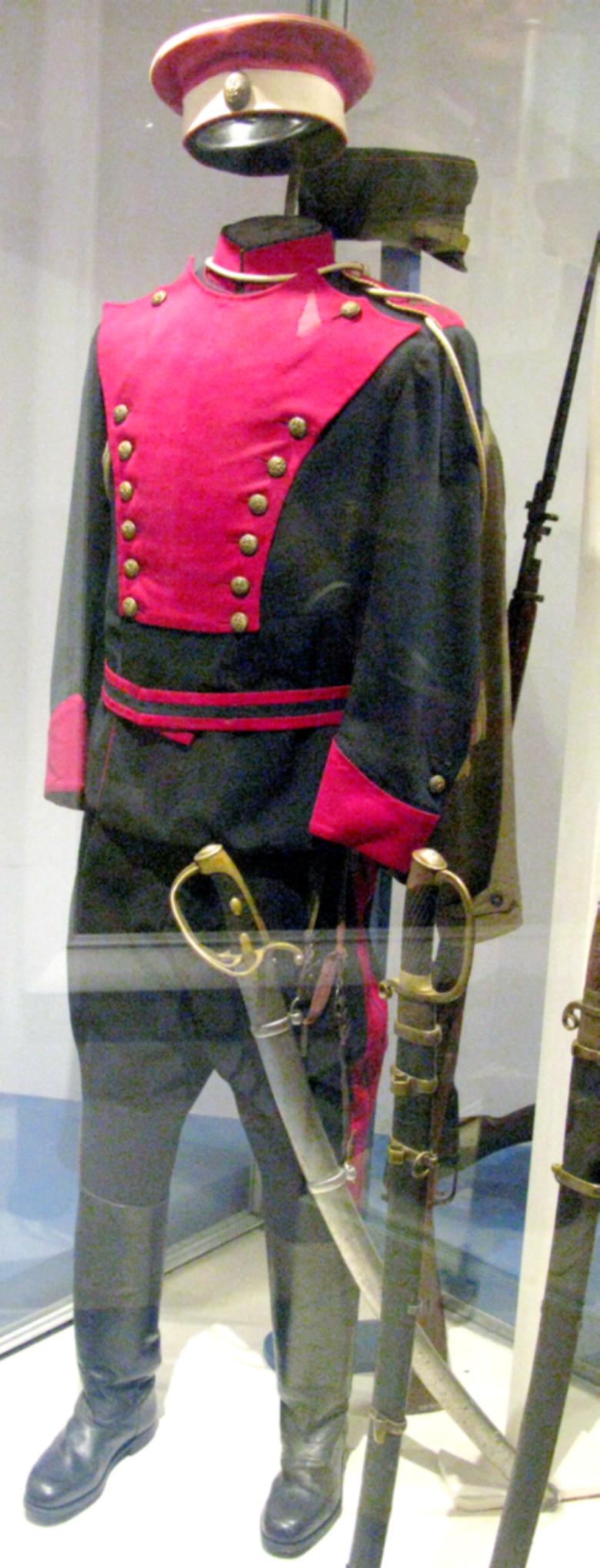 Parade_Uniform_of_Polish_Uhlan_of_Puławski_Legion.PNG