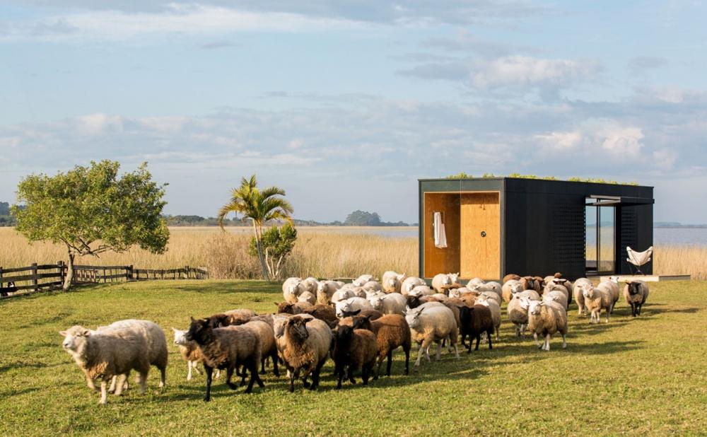 5крошечных домов, вкоторых больше уюта, чем вбольших коттеджах