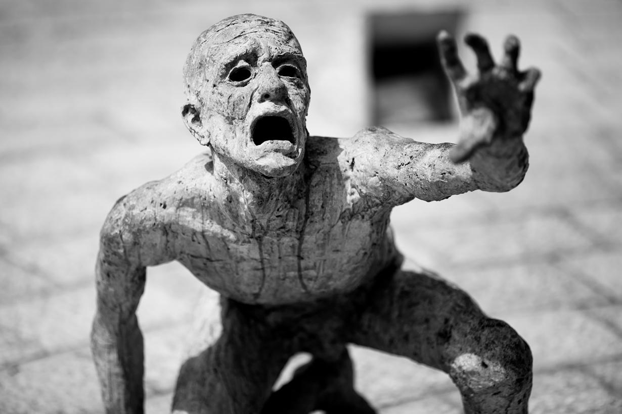 Полное или частичное отрицание Холокоста является противозаконным в 17 странах мира, включая Гер