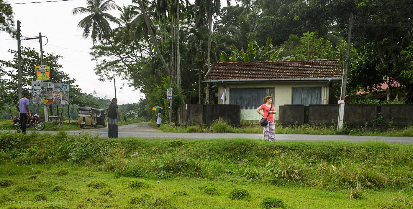 Фотография 4. Отдых на Шри-Ланке дикарями. Где-то на автобусной остановке в ланкийской деревеньке... Отзывы о самостоятельном путешествии по острову на машине, взятой в аренду.