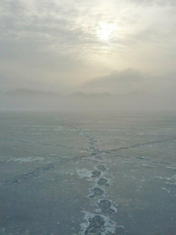 Путь в туман