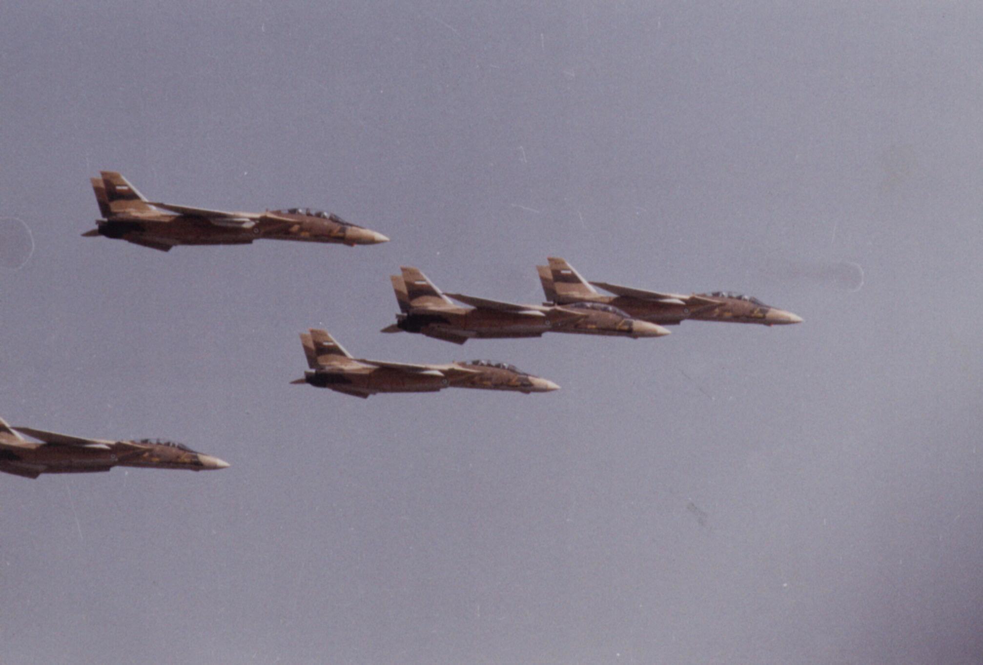 F-14formation_jpg.jpg