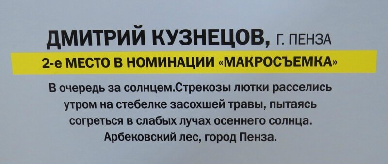 https://img-fotki.yandex.ru/get/742275/140132613.6a5/0_240ae2_e2be3168_XL.jpg