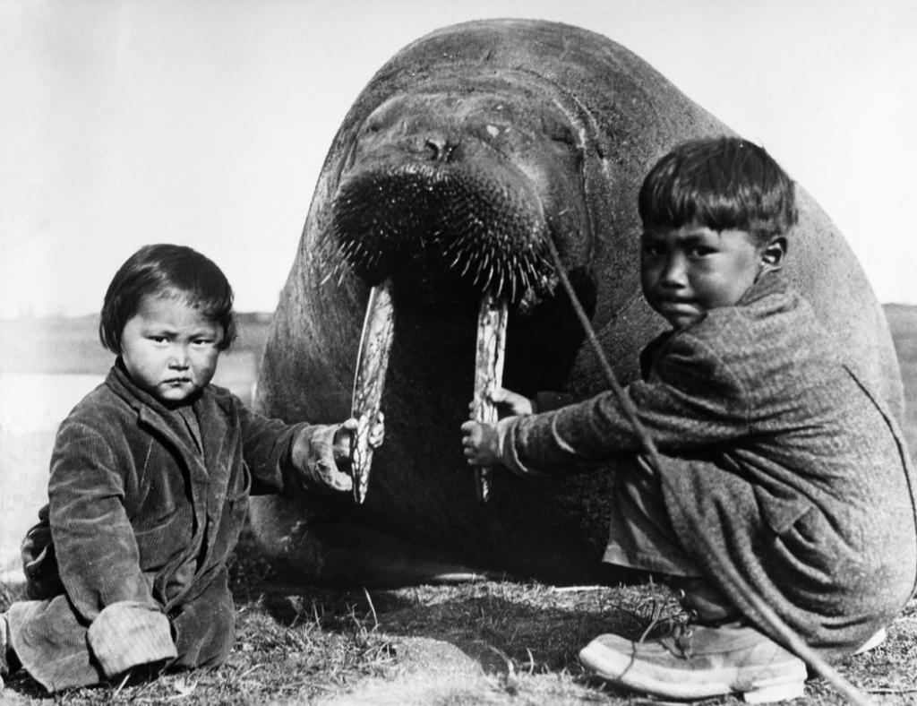 Инуиты | Фотохронограф