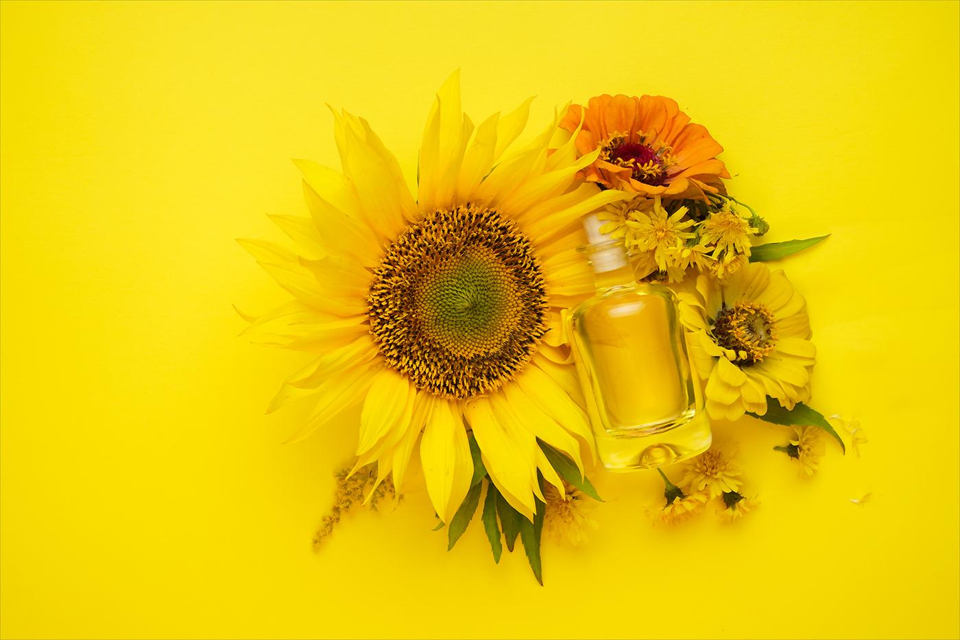 Игра с цветом / фото Ольга Драч