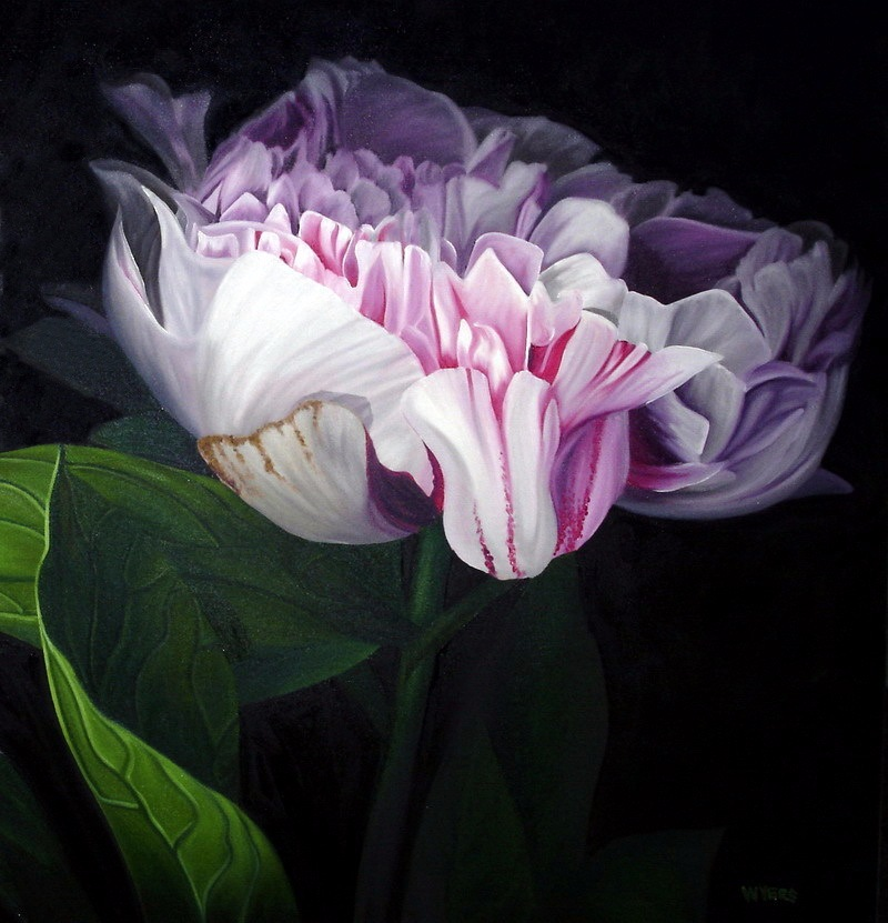 Рисованные цветы / художник Brian Wyers