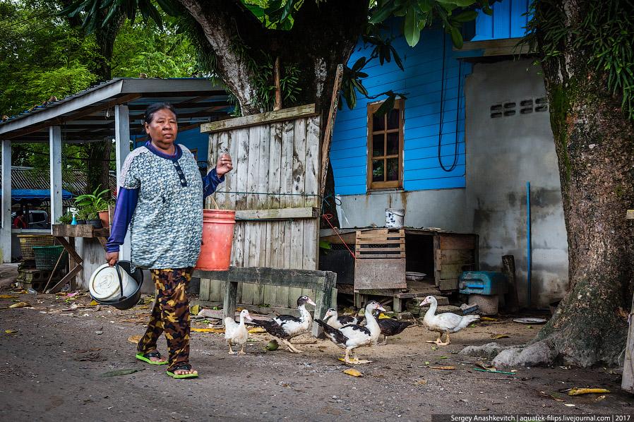 6. Гуляя по деревне, обратил внимание, что множество народа ... просто сидит. И ничего не делает. Ви