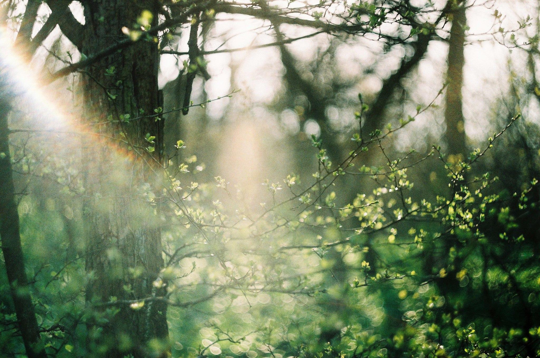 Фотографии от Erika Noskova