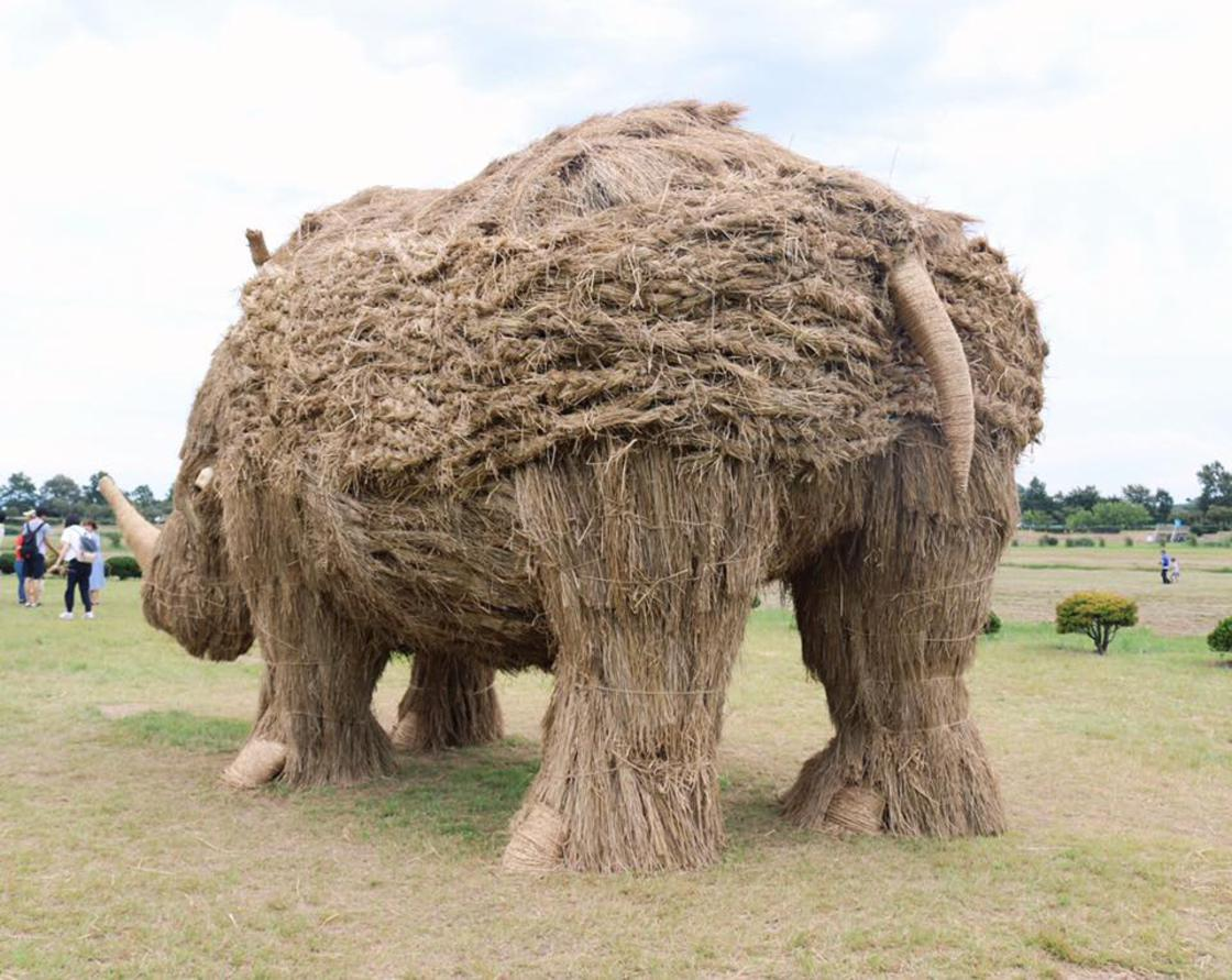 In Japan, the massive rice-straw animals of the Wara Art Matsuri