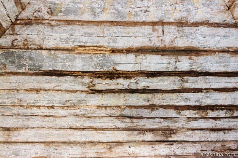 Полусгнившее дерево с остатками росписей