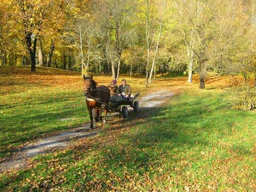 Поездка сквозь осень