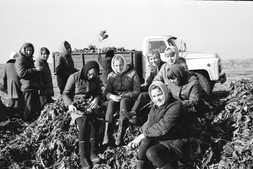 Трескино,школа на свекле, 1978 г
