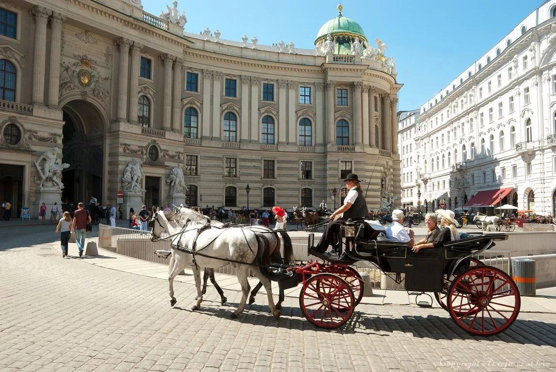 Интересные экскурсии по Вене с профессиональным гидами (1 фото)
