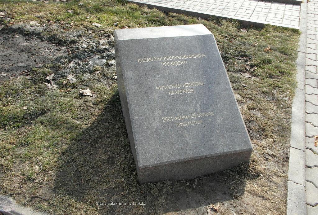 Дуб в Парке Первого Президента.